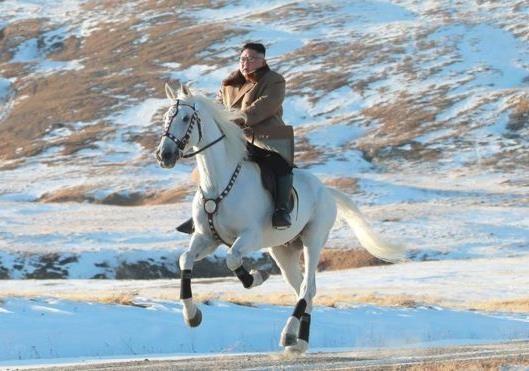 Ход лошадью
