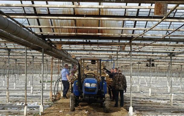 На Прикарпатті комбайном знищили 89 тисяч кущів конопель