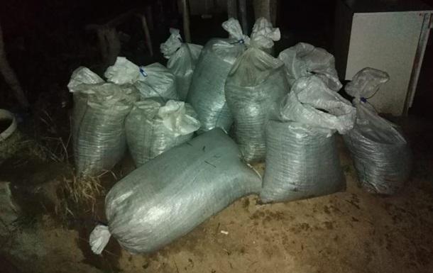 На Закарпатье изъяли 11 мешков янтаря