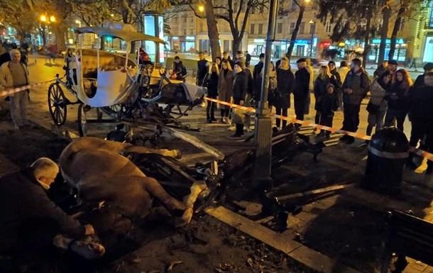 Во Львове временно запретили катать людей в каретах