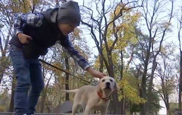 Мальчик собрал миллион лайков, чтобы мама купила ему собаку