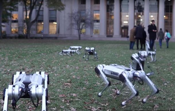 Biomimetics MIT выгулял своих роботов-собак в парке
