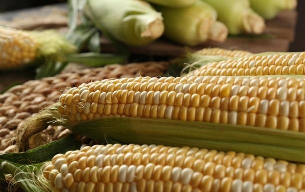Україна збільшила експорт агропродукції