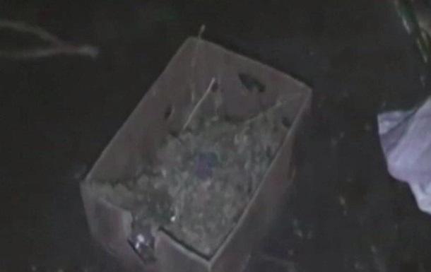 В Кривом Роге нашли комнату, забитую коноплей