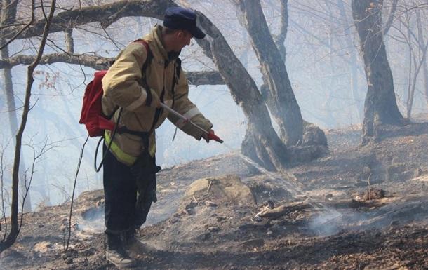 В Крыму 500 человек тушат крупный лесной пожар