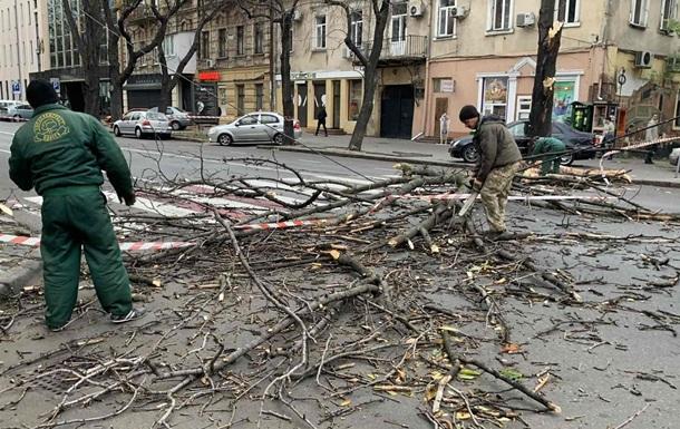 Ураган в Одессе повалил десяток деревьев