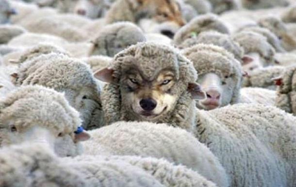 Закон о фейковых новостях - это  волк в овечьей шкуре ?