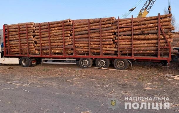У Житомирській області силовики провели 12 обшуків у лісгоспах