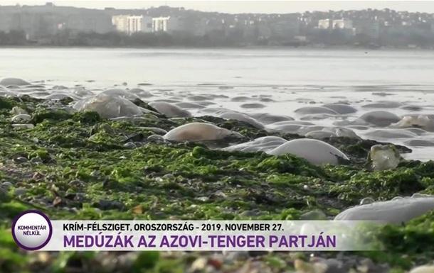Україна відреагувала на ТВ-сюжет з  російським  Кримом в Угорщині