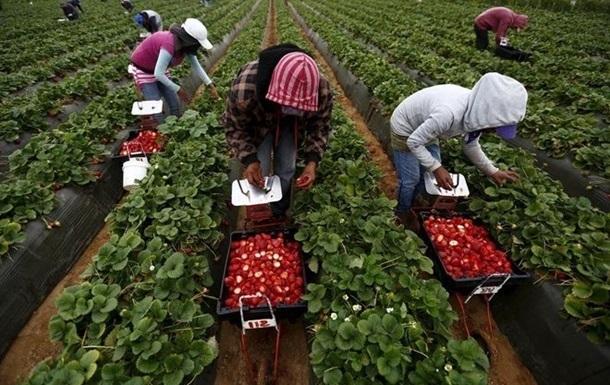 Третина українців думає про заробітки за кордоном
