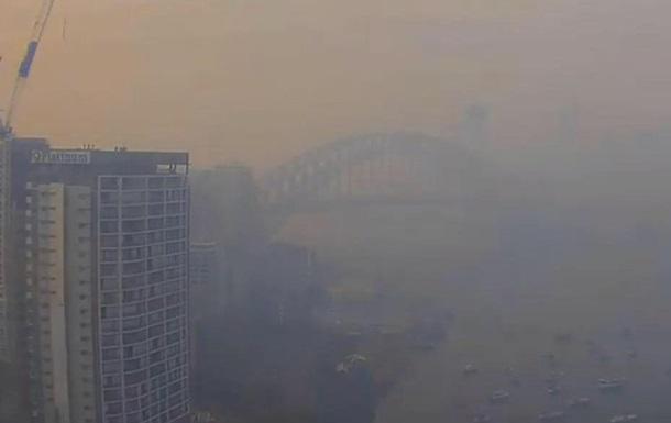Сидней затянуло дымом от лесных пожаров