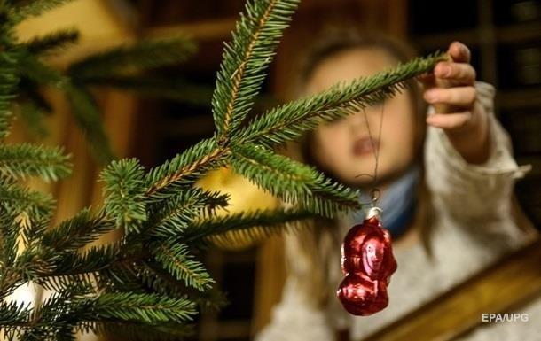 Живая или искусственная: украинцы рассказали, какую выберут елку