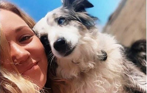 Американка найняла літак для пошуків вкраденого собаки