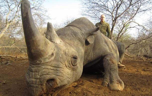 Нардеп зізнався у вбивстві носорогів
