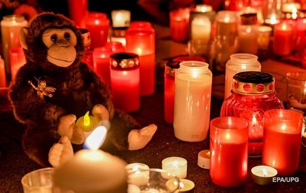 НП в зоопарку Німеччини: згоріли 30 тварин