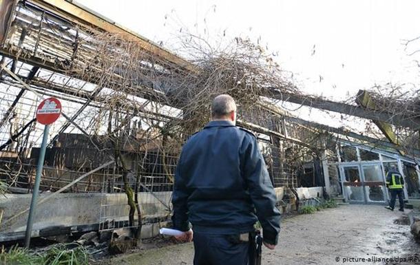 Пожежа в зоопарку Німеччини: поліція встановила причини займання