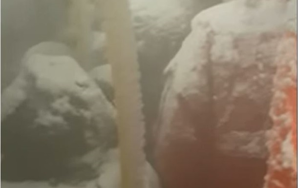 Автобус с пассажирами- снеговиками  попал на видео