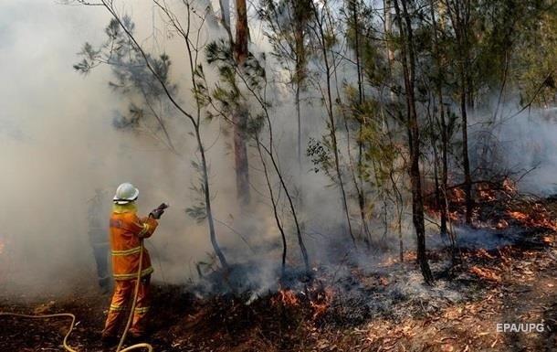 Итоги 06.01: Спасатели для Австралии и цена золота