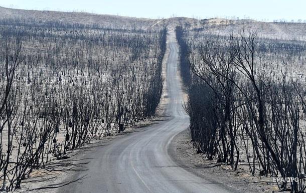 В Австралії лісова пожежа охопила площу понад 500 тисяч га