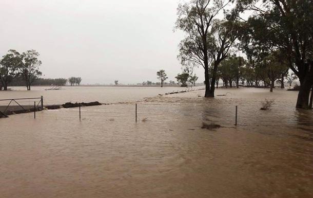 В Австралии после пожаров прошли дожди