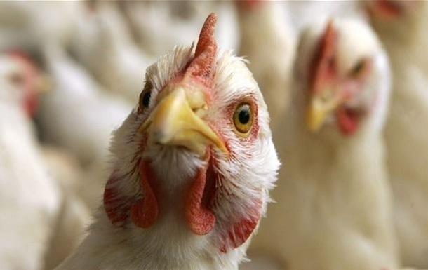 ЕС приостановил ввоз мяса птицы с Украины