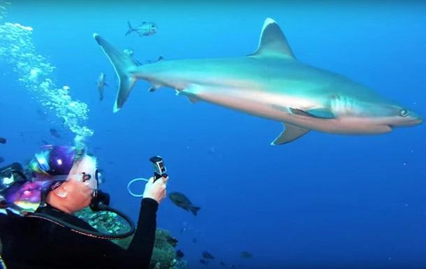 Дайвер відбилася від акули голіруч