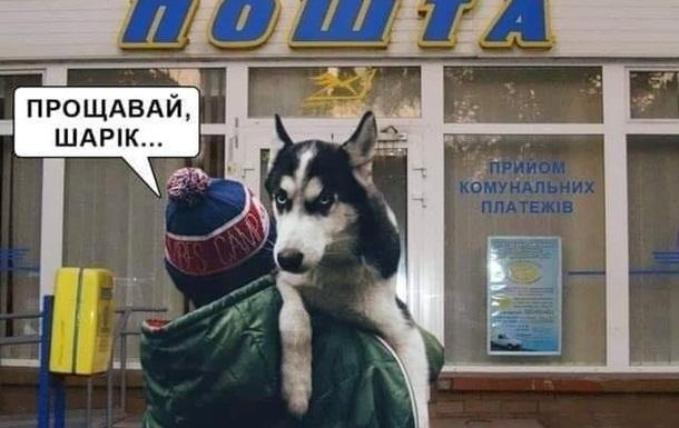Итоги 01.02: Собачий скандал и смерть на Донбассе