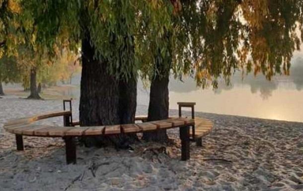 Дереву Цоя  в Киеве предоставила особый статус