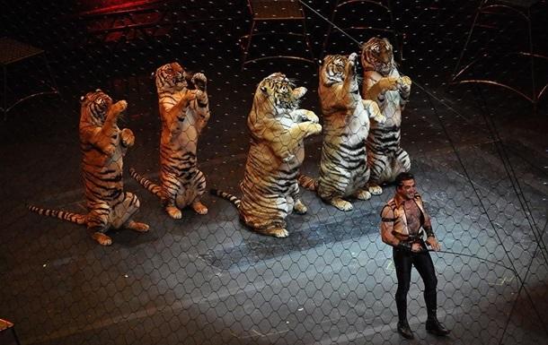 Українські цирки повинні за рік оновити програми без тварин