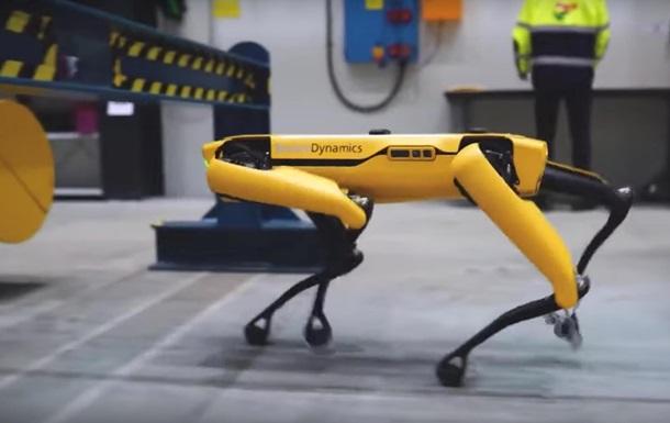 Робопес Boston Dynamics работает на нефтяной вышке
