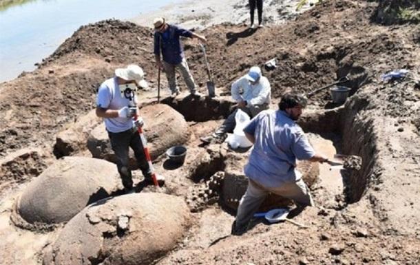Пастух нашел останки вымерших 10 тыс лет назад глиптодонов: фото
