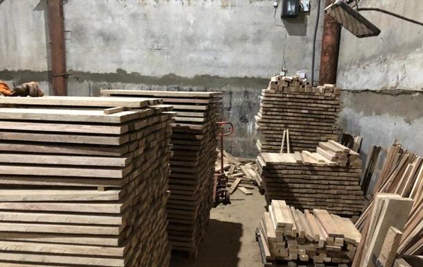 У Києві  чорні лісоруби  зрізали дуби в заказнику