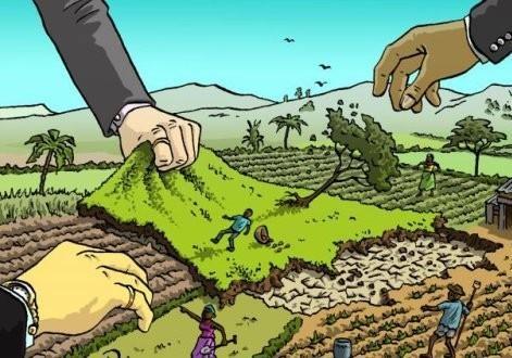 Трагічний досвід Мадагаскару: від ринку землі до голоду!