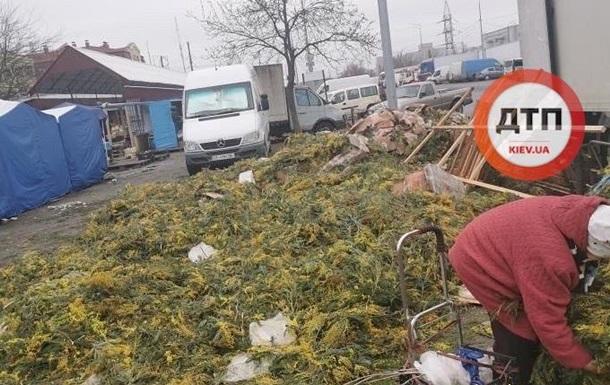 Свалку мимоз обнаружили в Киеве после 8 марта