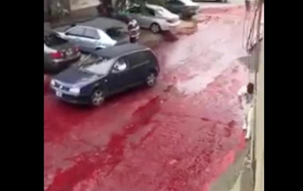 В Аргентине тысячи литров крови разлили на улице