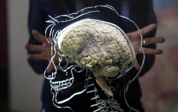 Відкрита схема росту головного мозку