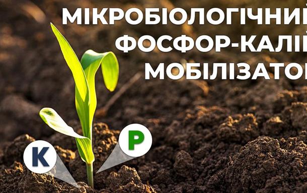 Мікробіологічний фосфор-калій мобілізатор для сільськогосподарських культур