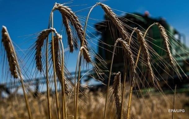 В Украине прогнозируют резкое падение урожая зерна