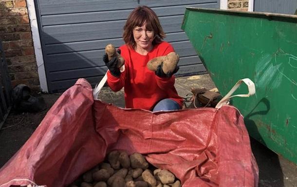 Британка бесплатно раздала людям на карантине овощи со своей фермы