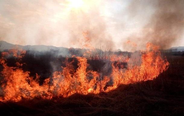 На Закарпатье произошел пожар в Долине нарциссов