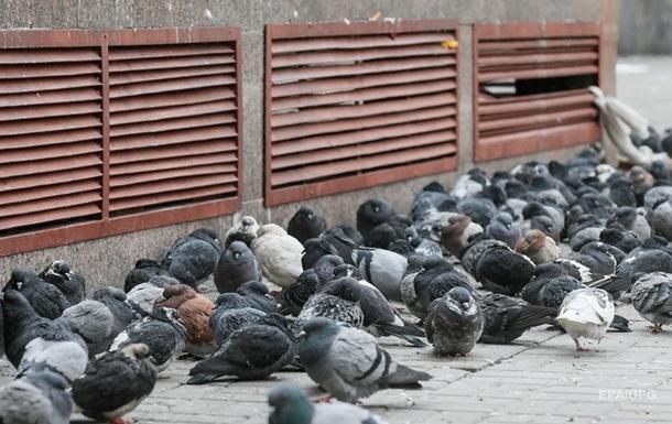 Погода на тиждень: на українців чекає похолодання