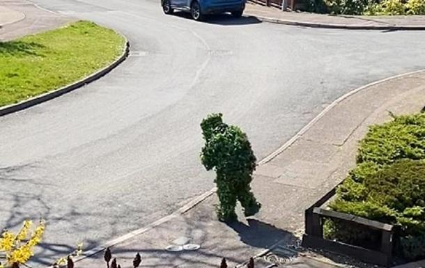 Мужчина нарушил карантин в костюме куста: фото, видео