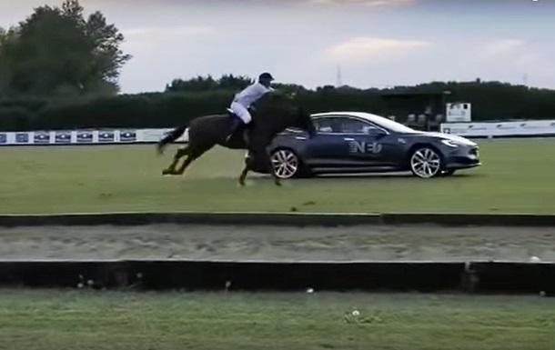 Tesla Model S участвовала в гонке против лошади