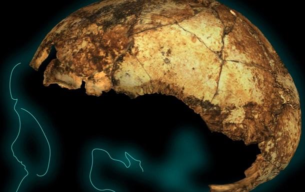 Знайдено найдавніший череп Homo erectus