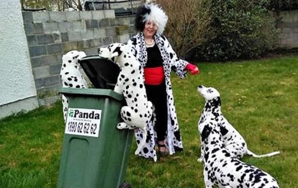 Австралийцы устроили смешной  мусорный флешмоб : фото