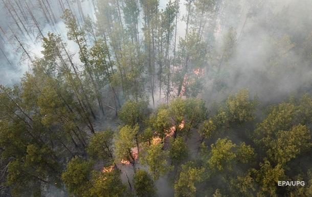 Метеоролог назвал причину массовых пожаров в Украине