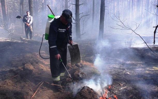 Пожар на Черниговщине: горит почти 200 га леса