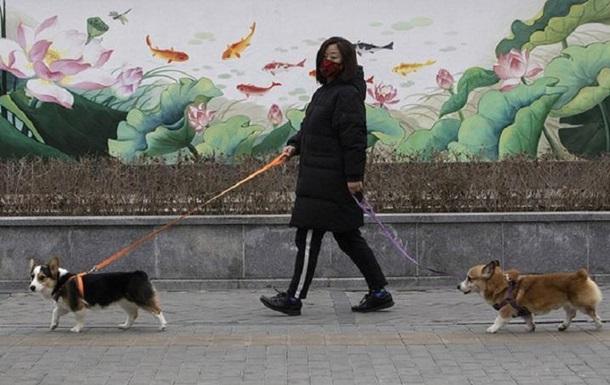 Китай причислил собак к домашним животным