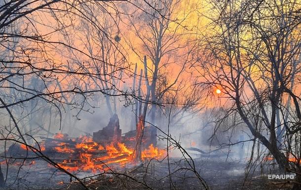 Пожары в зоне ЧАЭС: радиация в норме