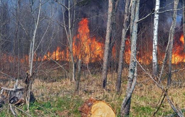 У ДСНС розповіли про ситуацію з пожежами в Чорнобильській зоні